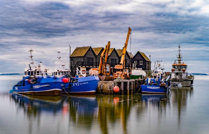 Сассекс войдёт в историю, первым запретив рыбный промысел ради климата
