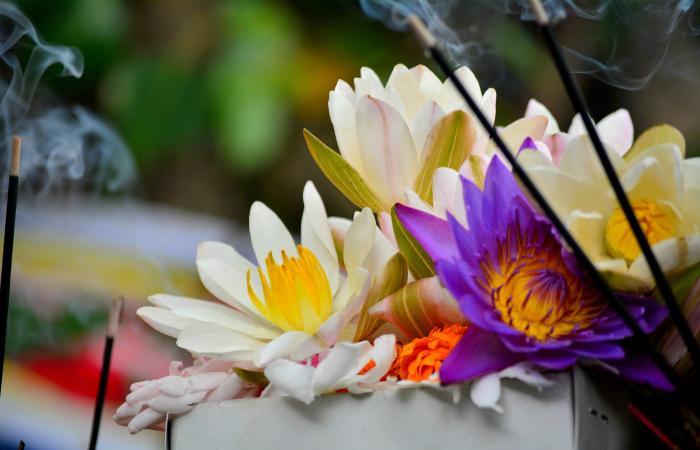 Индийский стартап делает веганскую кожу из цветов, оставленных в храмах