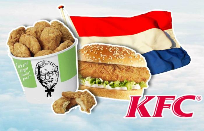 KFC в Роттердаме заменит всё мясо растительными альтернативами в течение Национальной недели без мяса