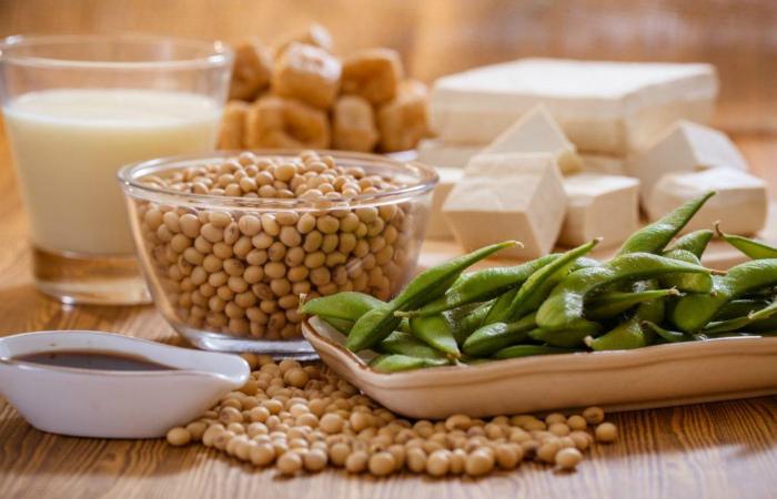 Глобальный рынок растительного белка к 2024 году будет стоить $35 млрд.