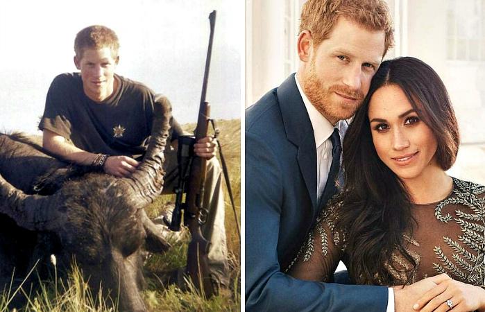 Принц Гарри может бросить охоту, поскольку Меган против