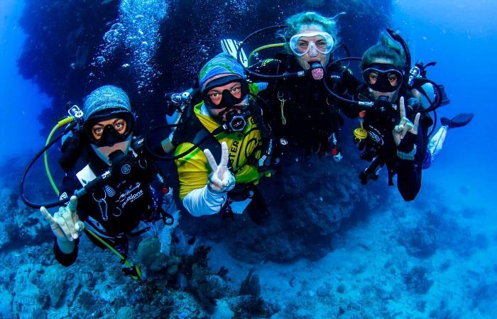 Австралийский туроператор выращивает коралловые рифы во время COVID-19